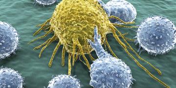 Inmunoterapia para vencer el cáncer